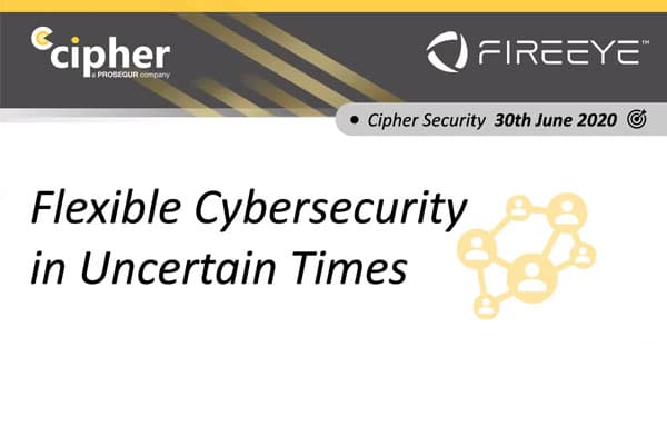 Flexible Cybersecurity for Uncertain Times